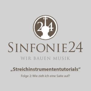 Sinfonie24 Einsteiger-Geigen-Set Palisander Basic-II