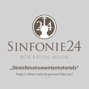 Sinfonie24 Einsteiger-Geigen-Set Bernstein Basic-II