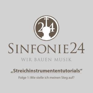 Schulorchester Cello Miete
